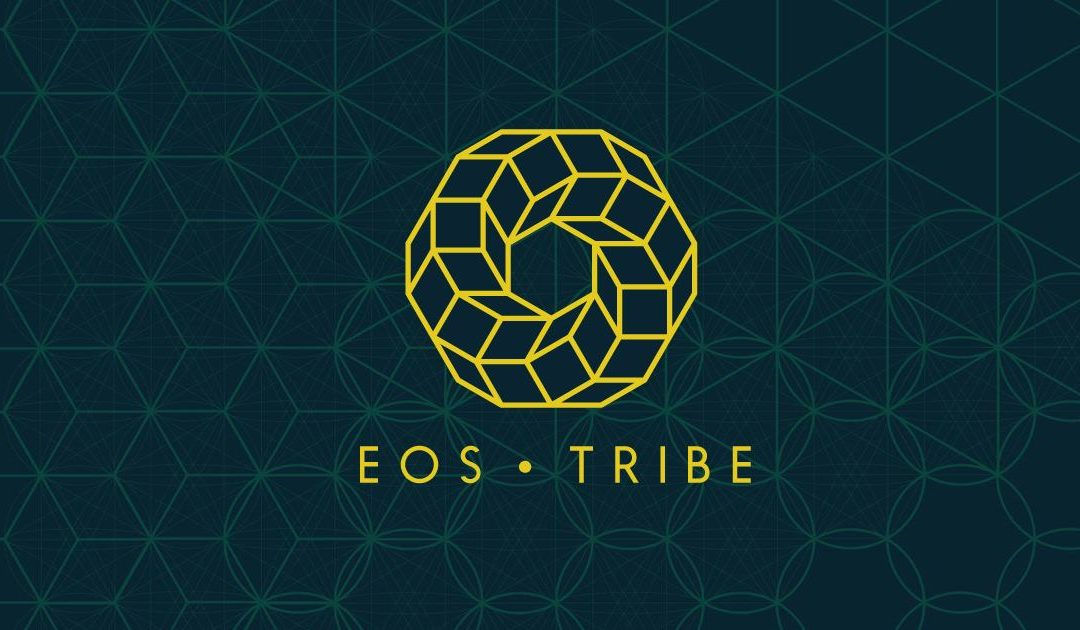 #15 EOS Tribe, their Incubator and QOQO Decentralized Answers
